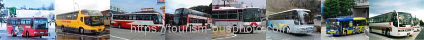 全国の観光バスと路線バス